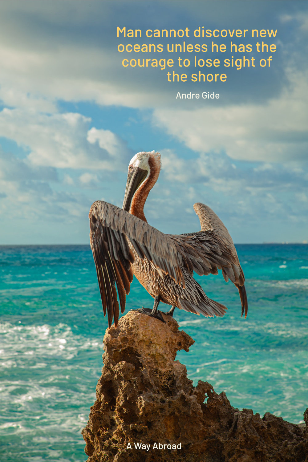 a pelican sitting on a rock overlooking the ocean