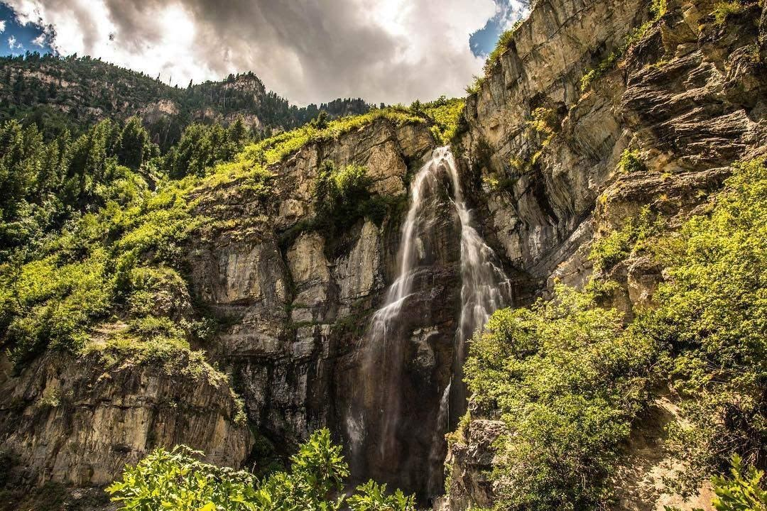 A large waterfall in a forestDescription automatically generated