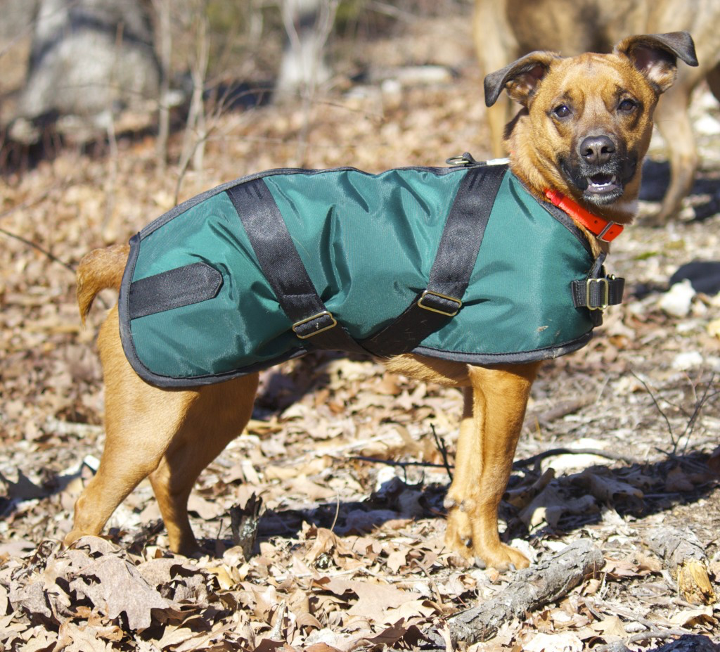 Furry Mountain Nylon Turnout Dog Coat