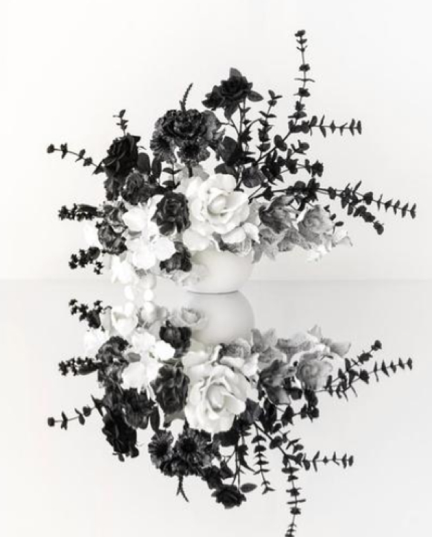 Fine art photography of a black and white bouquet by Anna Church