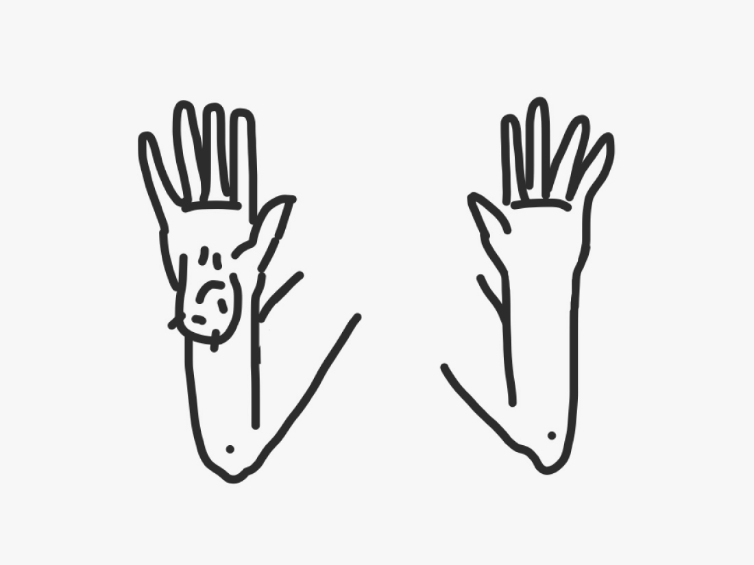 Simple drawing of hands. One hand has a testicle on it.