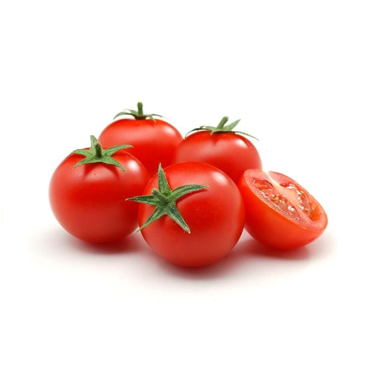cà chua tăng vòng 1