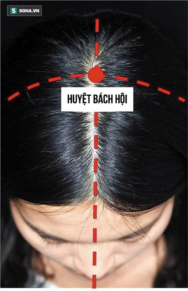 bậm huyệt bách hội giúp  mọc tóc