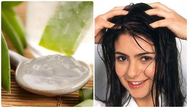 trị rụng tóc bằng nha đam