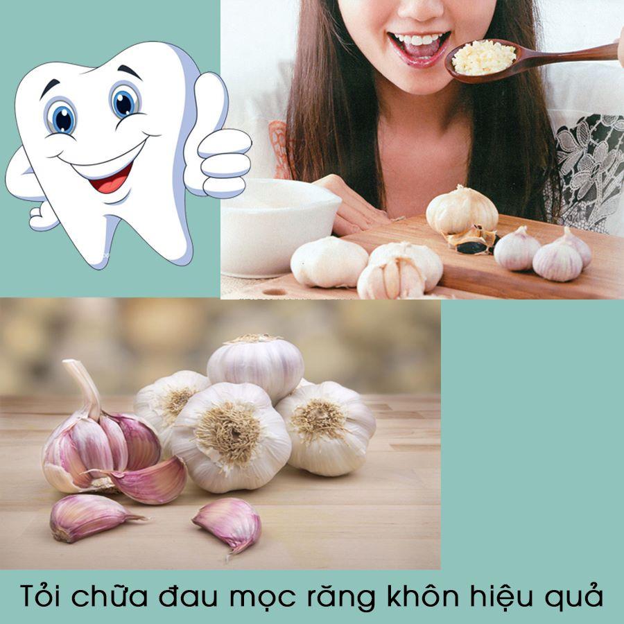 tỏi trị đau răng khôn