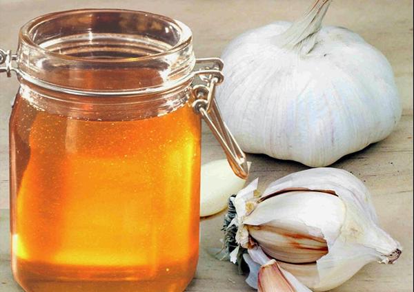 cách trị gầu và giảm rụng tóc bằng tỏi và mật ong