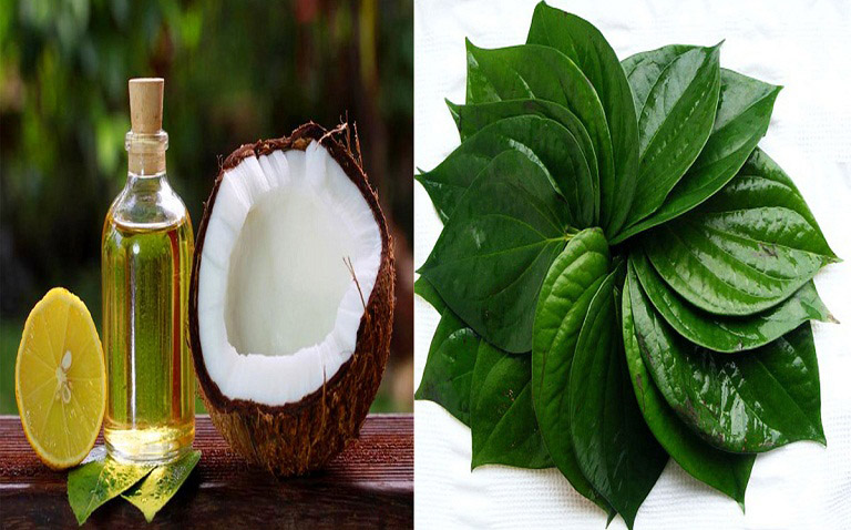 Chữa hắc lào bằng dầu dừa và trầu không