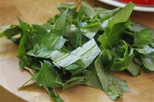 cách trị lang ben bằng rau răm