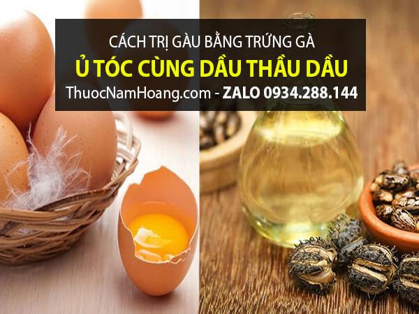 Trứng Gà với Dầu Thầu Dầu trị gàu