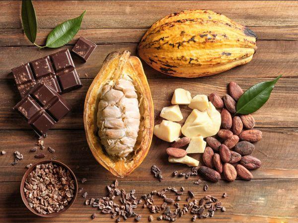 cách trị chàm bằng bơ cacao
