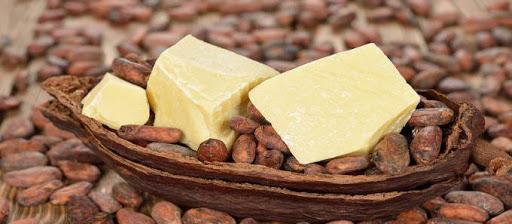 Bơ cacao có trị bệnh chàm