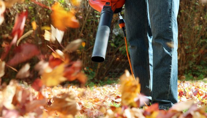 fall yard clean up in toronto
