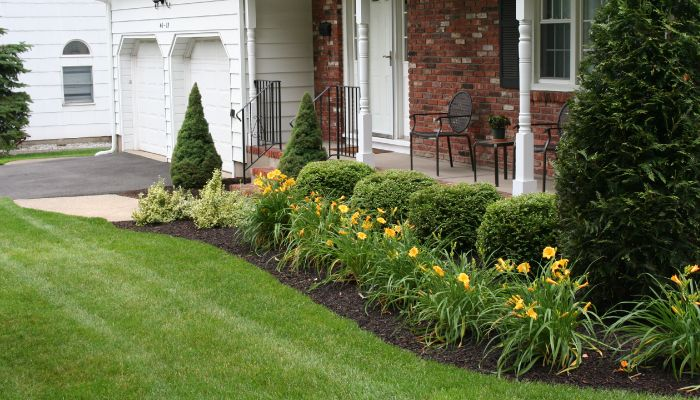 spring clean-up services in toronto