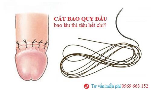 cat-bao-quy-dau-bao-lau-thi-tieu-het-chi.