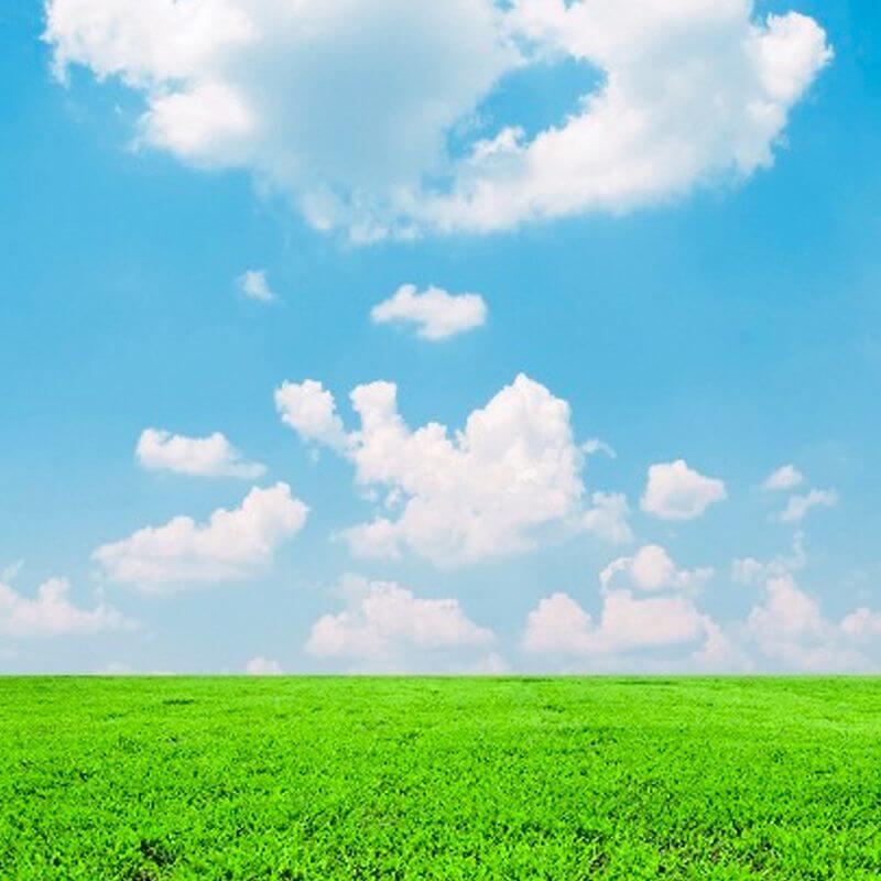 A green open field below a blue sky with soft clouds