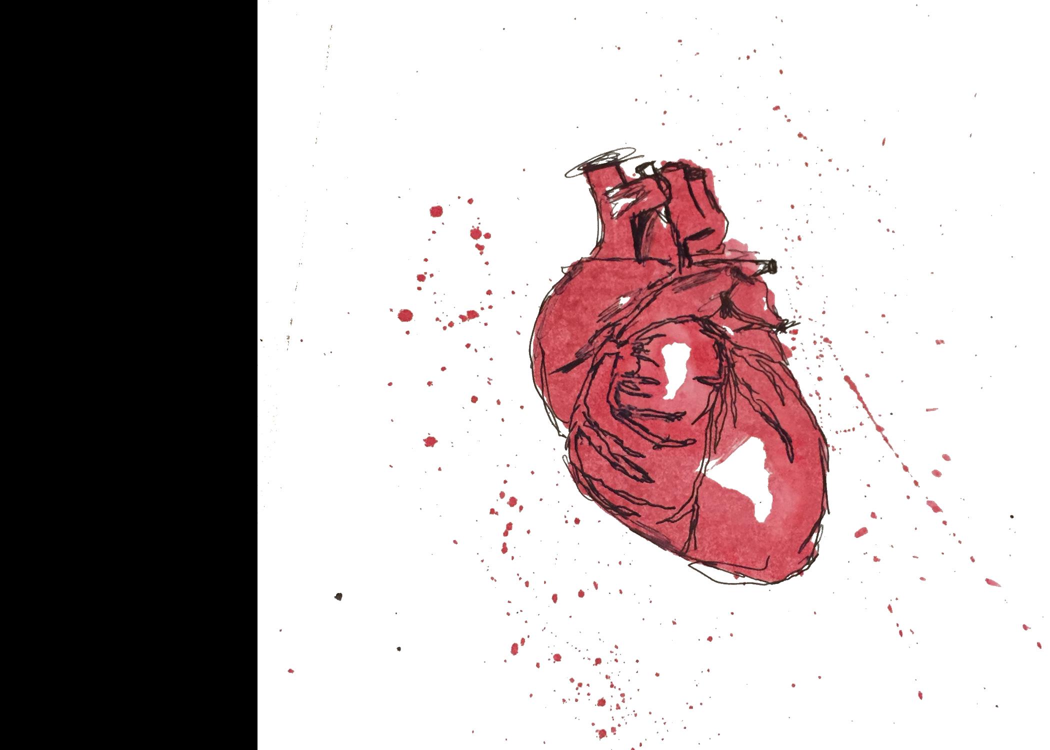 ALA Creative Drawn Heart