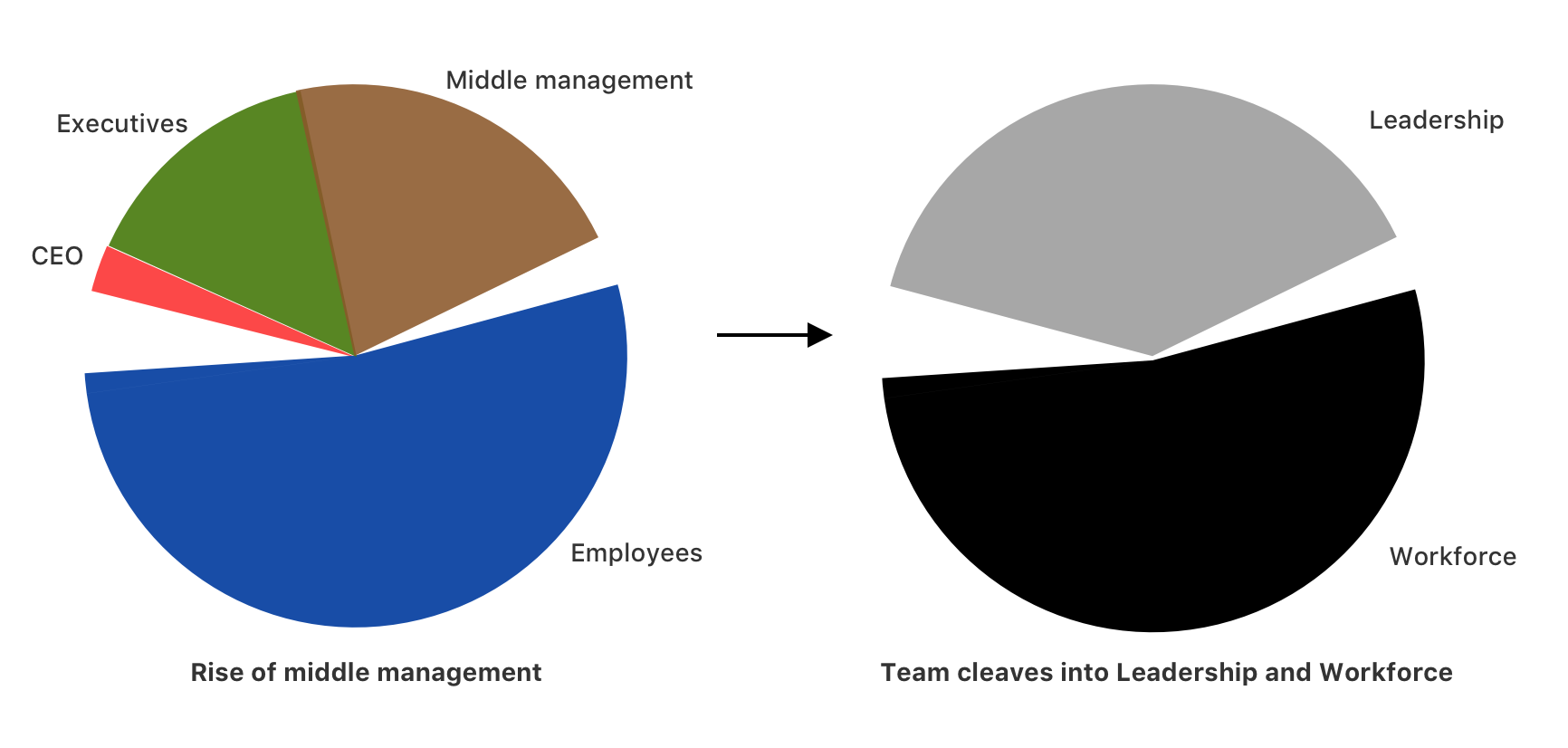 How the rise of middle management cleaves the team into leadership and workforce