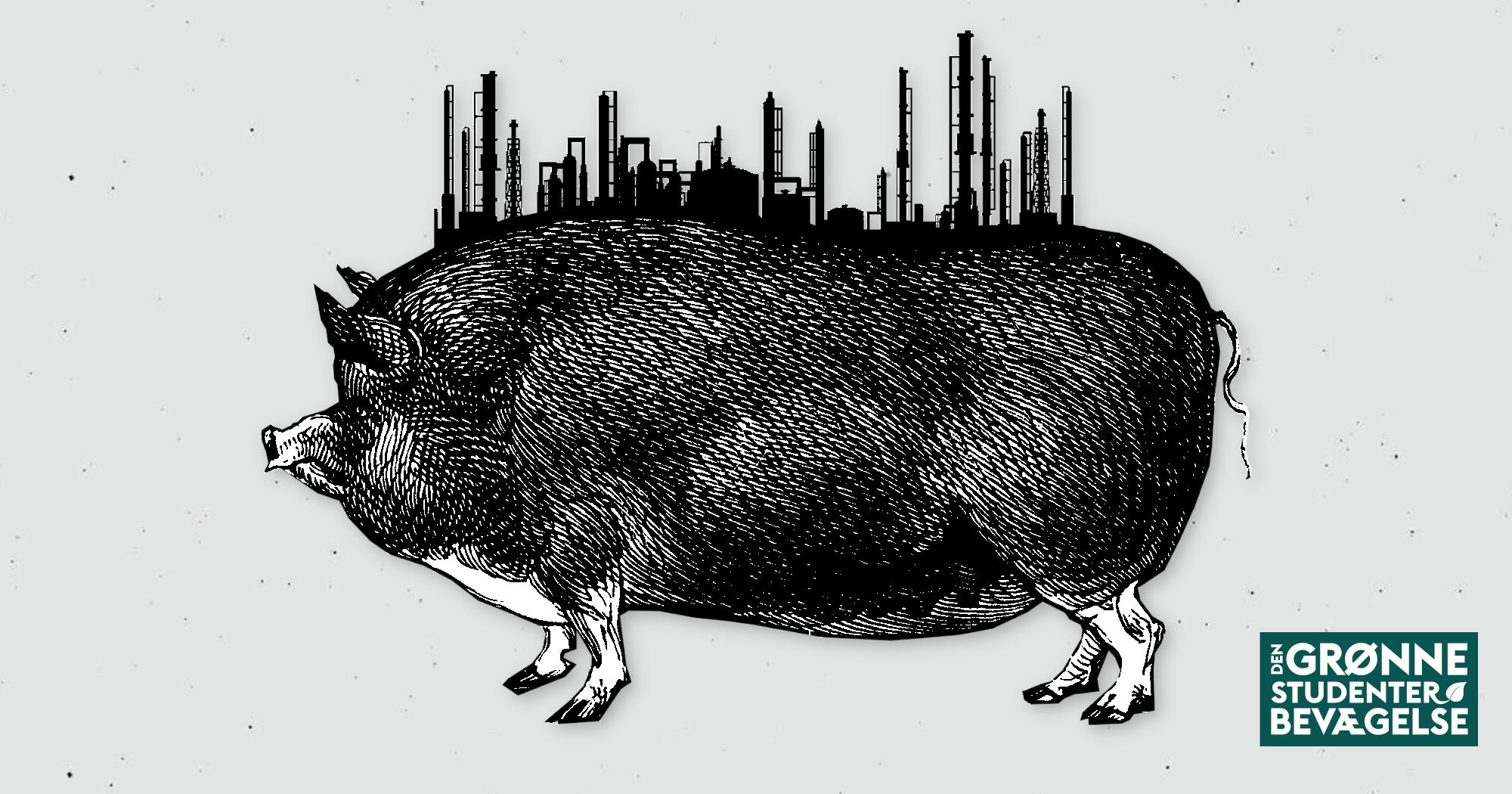 Danske svinefabrikker er spild af liv