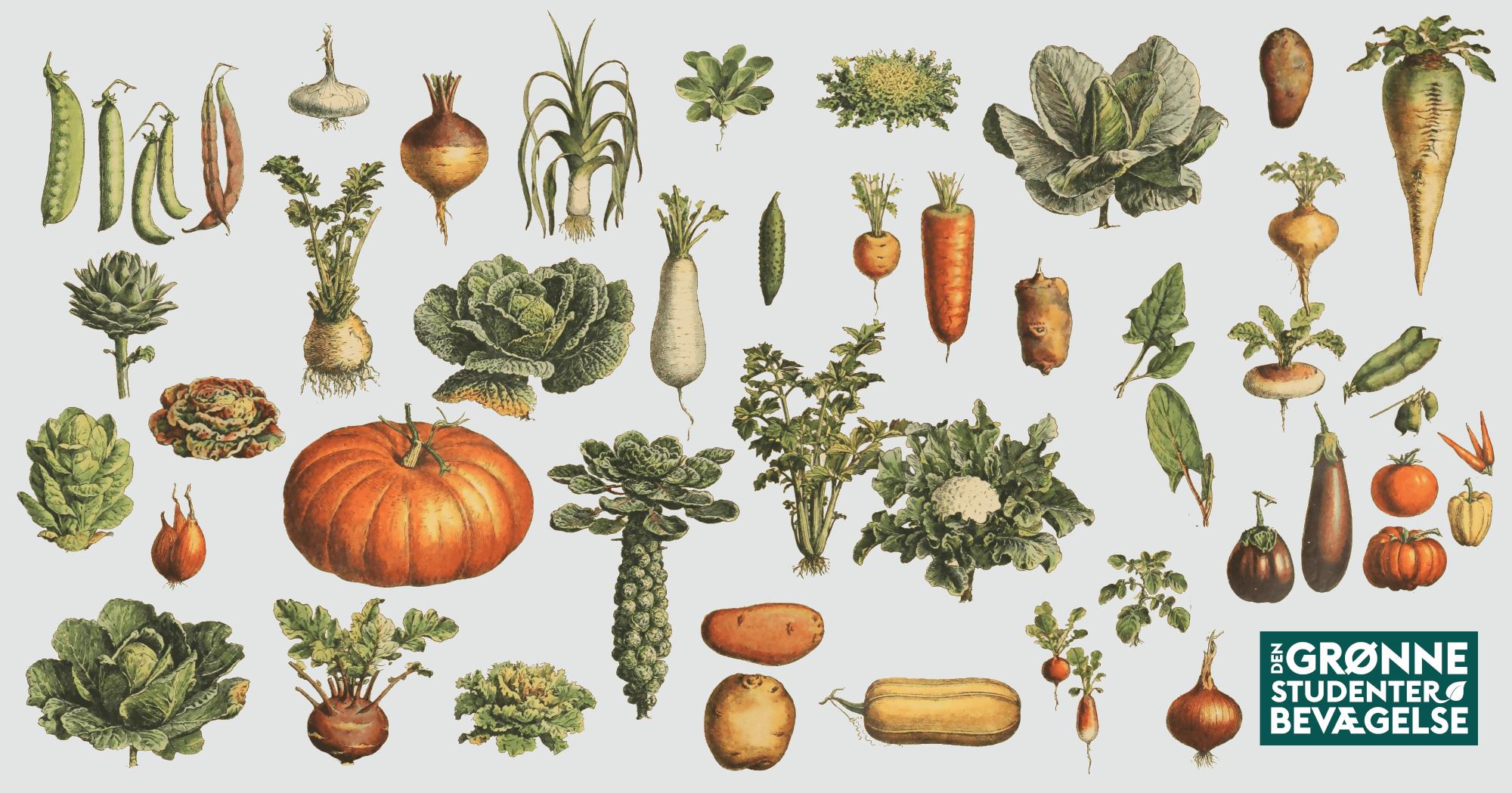 Mad til mennesker - en ny epoke for klimavenligt landbrug