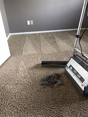 Residential Carpet Cleaning in Colorado Springs, CO
