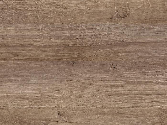 Ontario oak reproduction