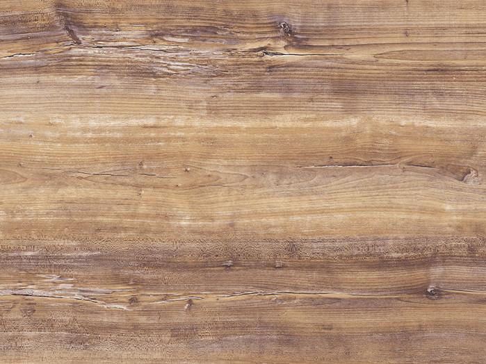 Arizona pine reproduction