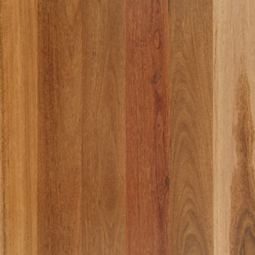HydroPro Engineered Spotted Gum Timber Flooring