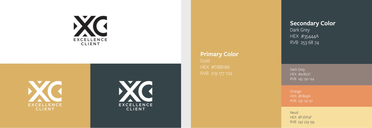 excellence client brand identity