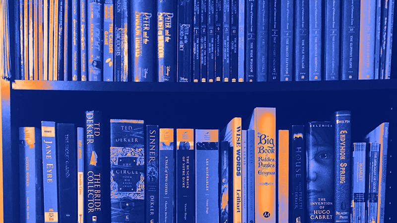 Books lined up on a shelf