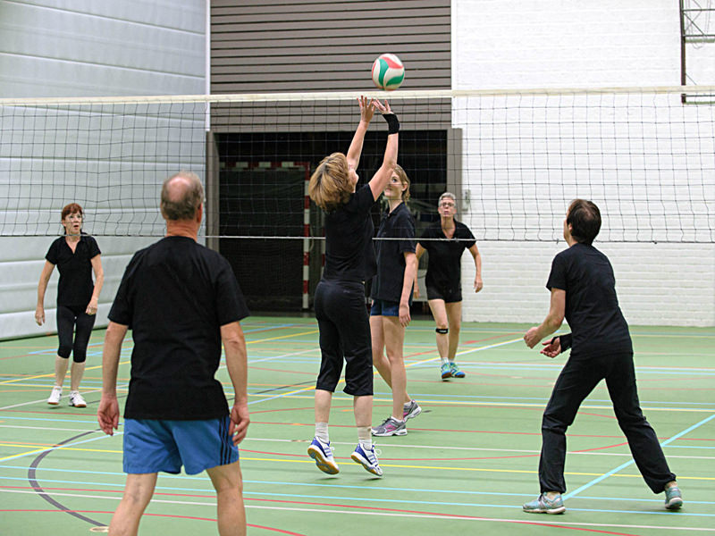 Filet d'entraînement de volley-ball