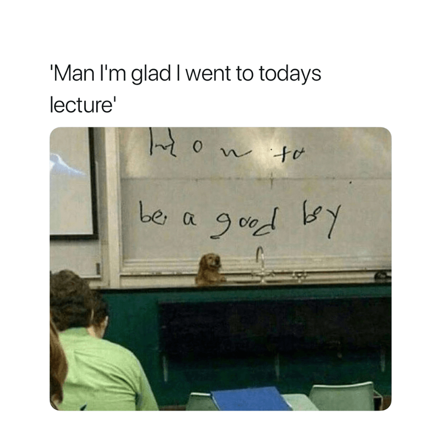 Dog giving lectures