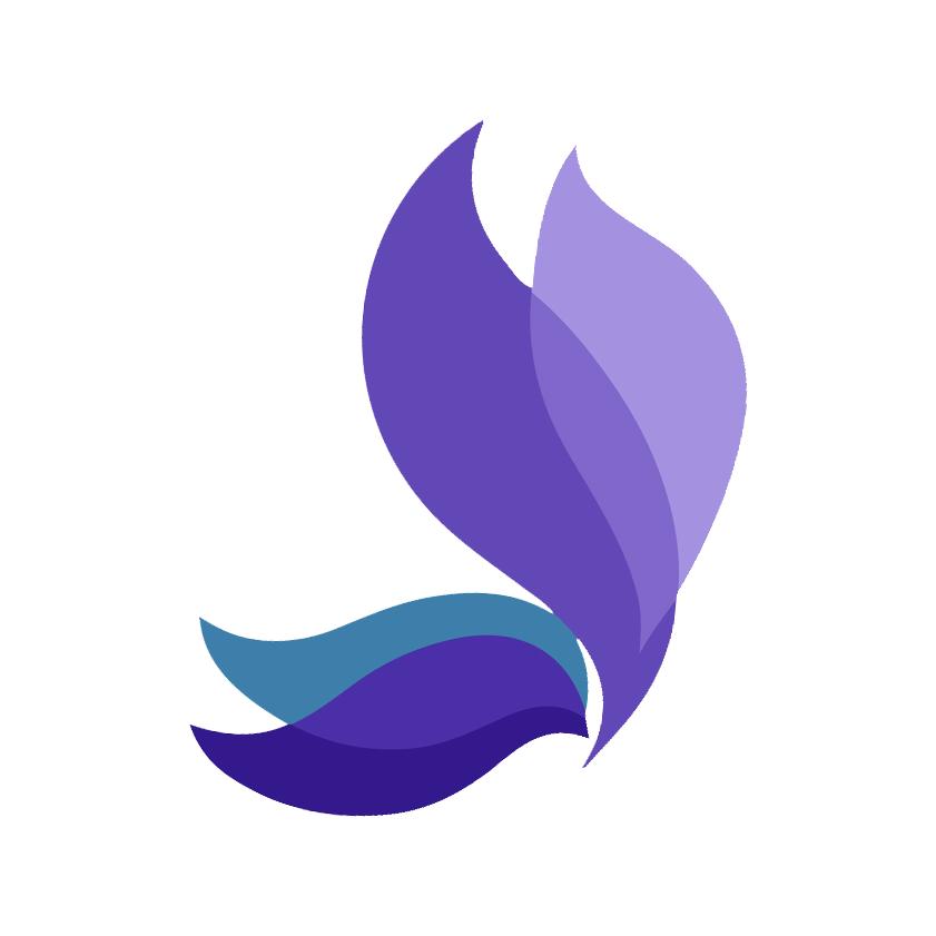 Web Design - Shopify - WordPress