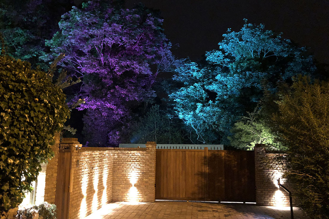 RGB Lights in secret garden, Mill Hill