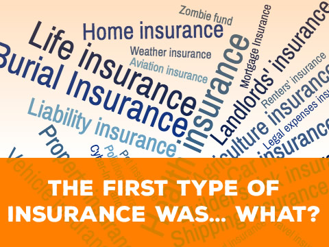 How Does Insurance Work?: How Insurance Started, How Your Premiums Are Set, and What Happens to the Profits