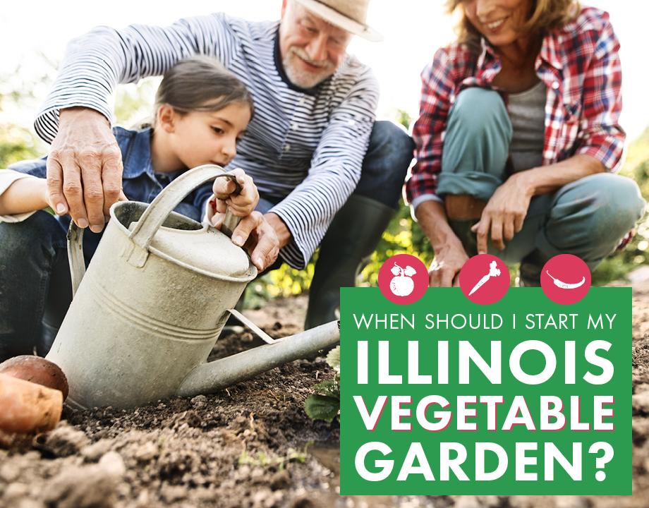 When Should I Start My Illinois Vegetable Garden?