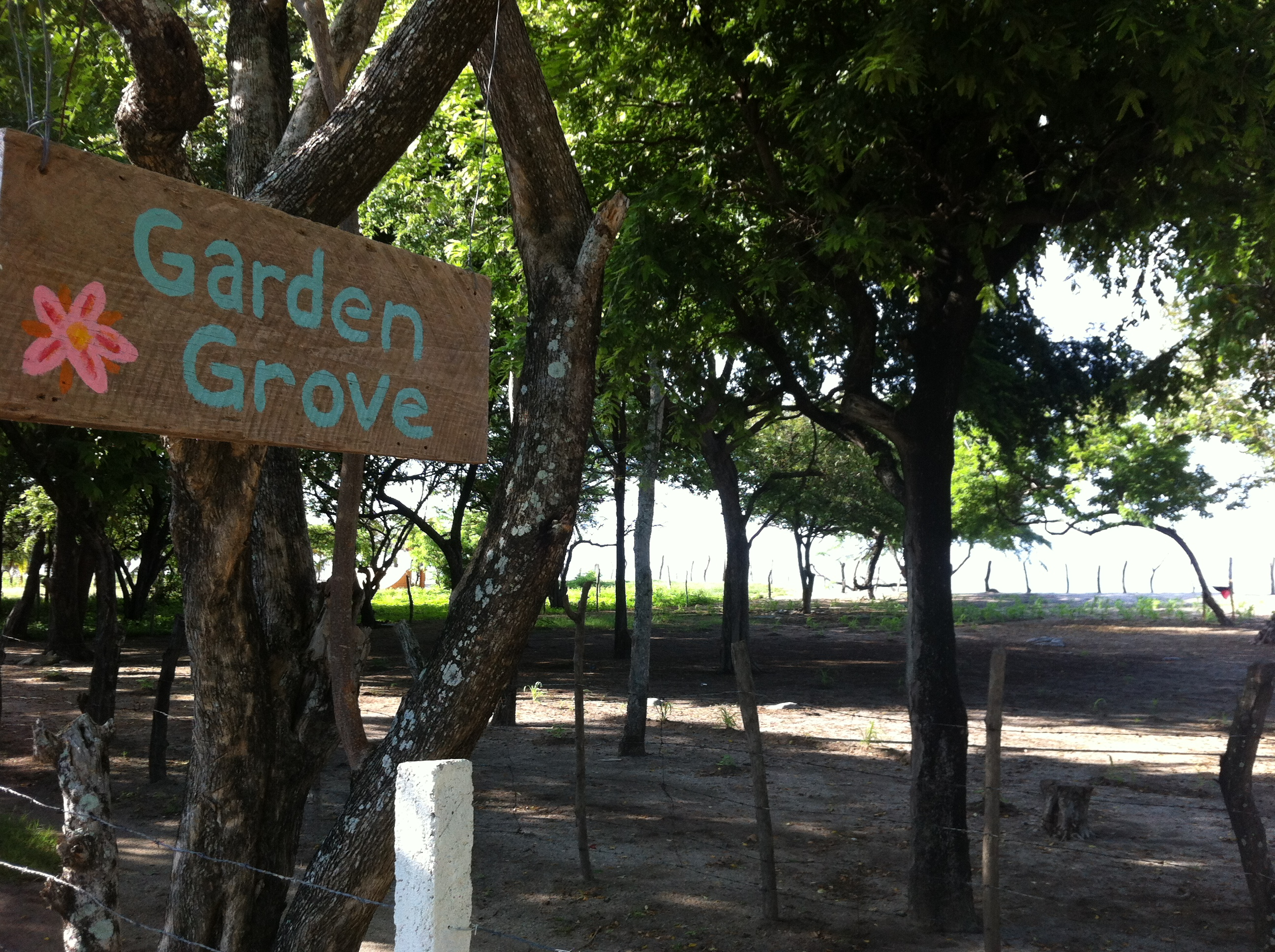 Garden Grove   Photo by Wilson Carletti (All Rights Reserved)