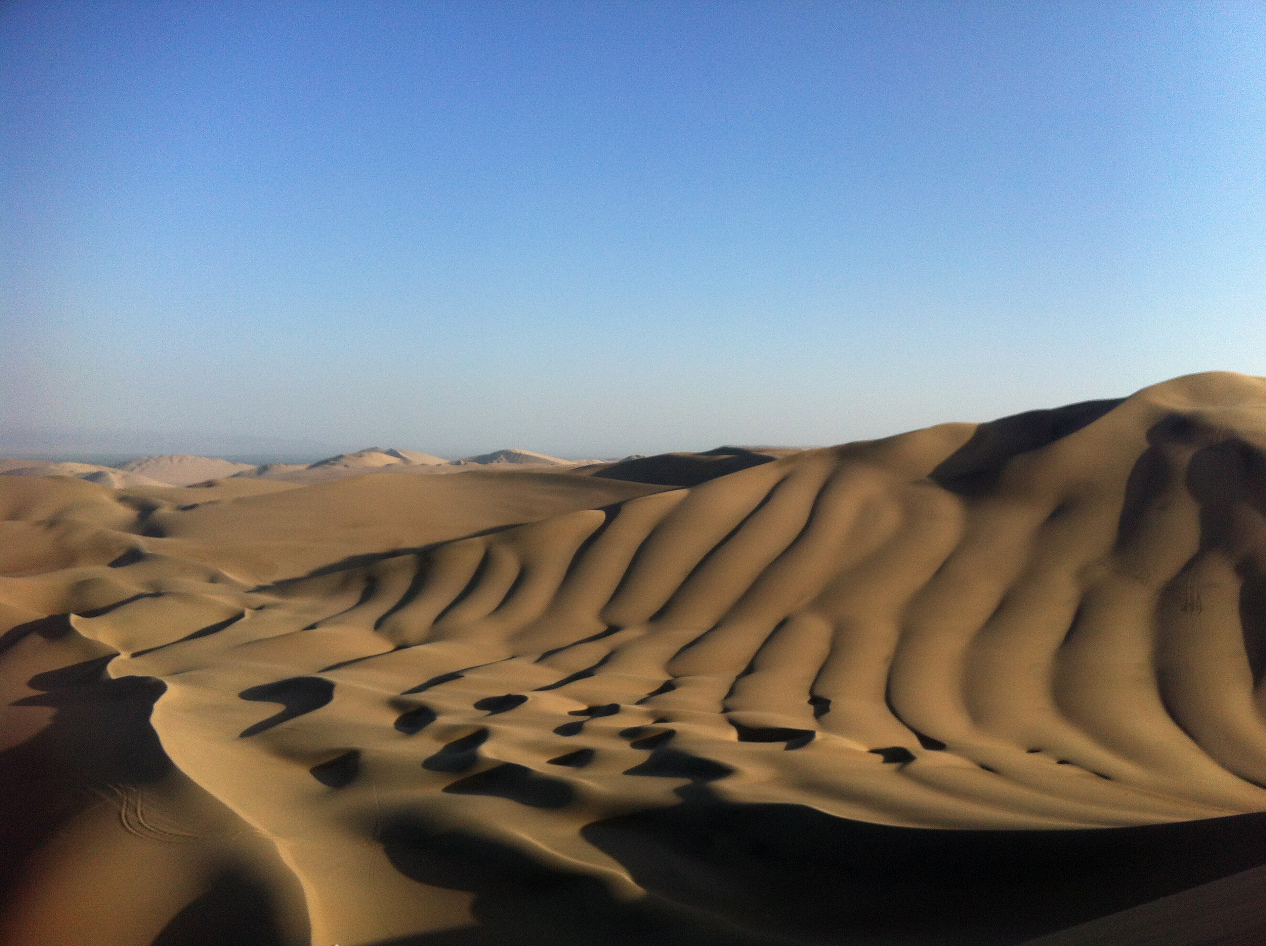 Sand Dunes | Photo by Wilson Carletti (All Rights Reserved)