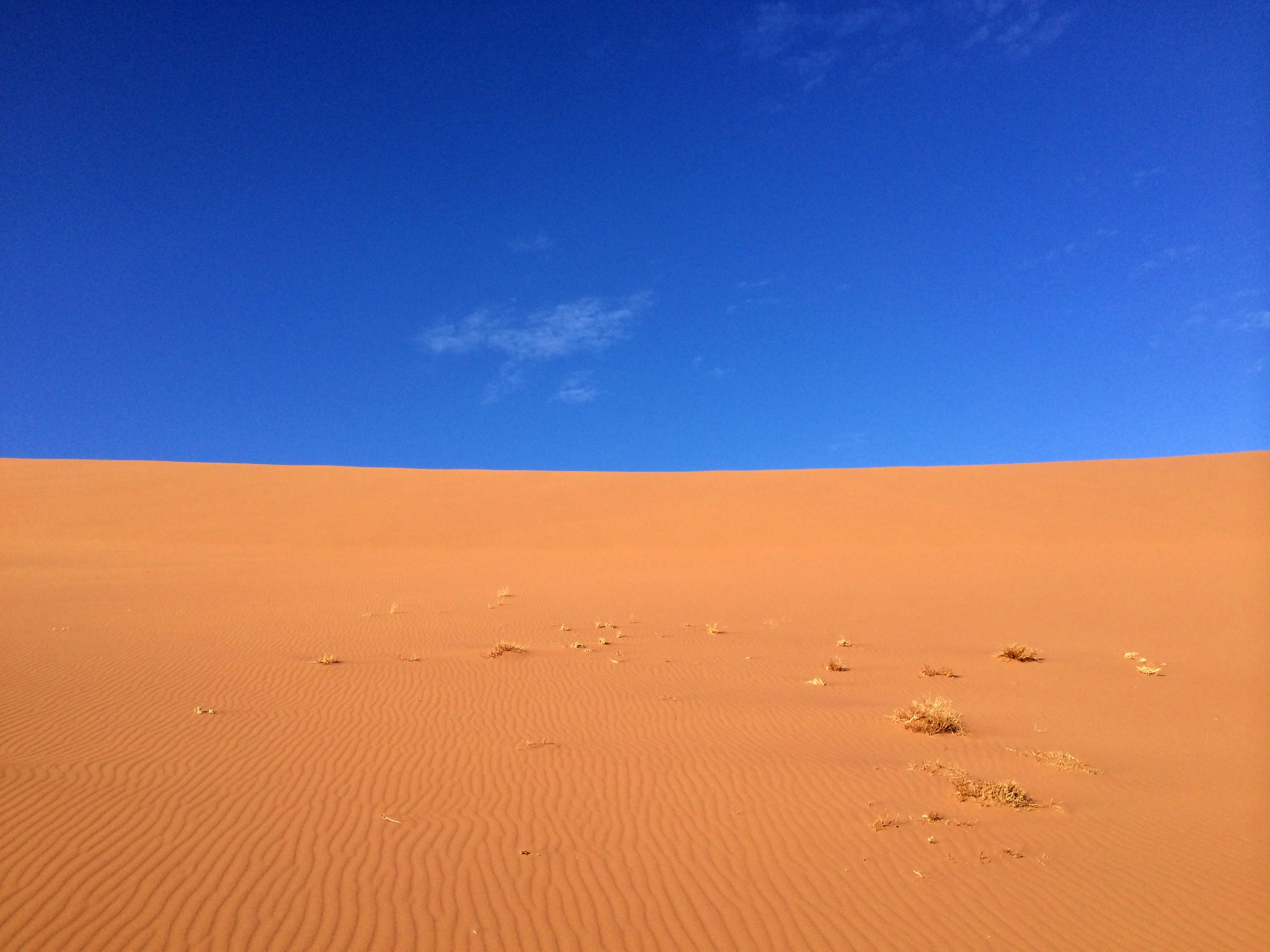 Sand Dune | Photo by Wilson Carletti (All Rights Reserved)