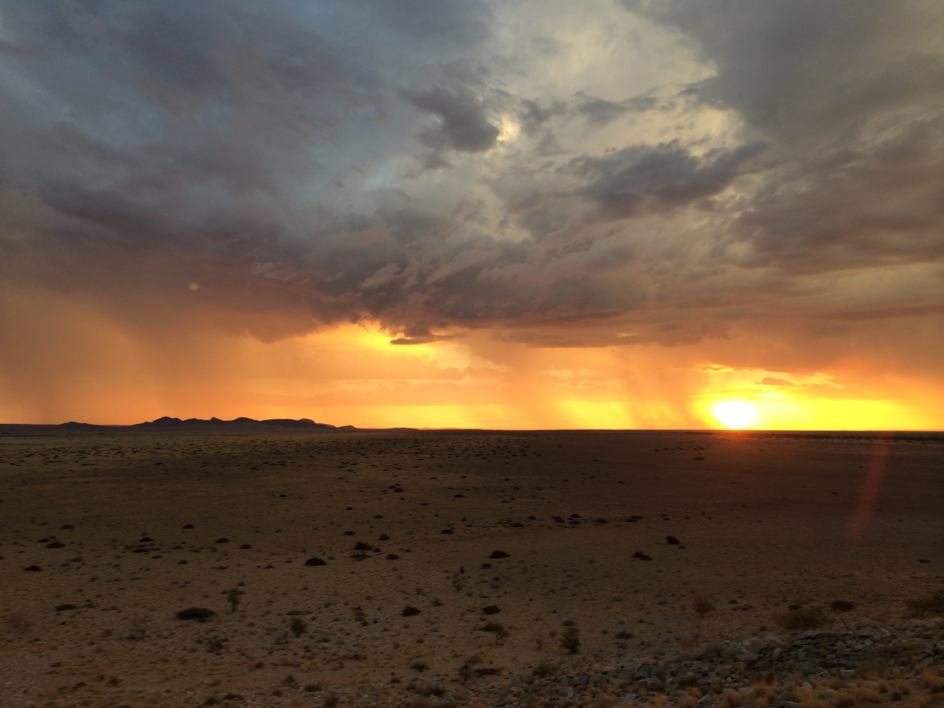 Sunset in the desert | Photo by Wilson Carletti (All Rights Reserved)