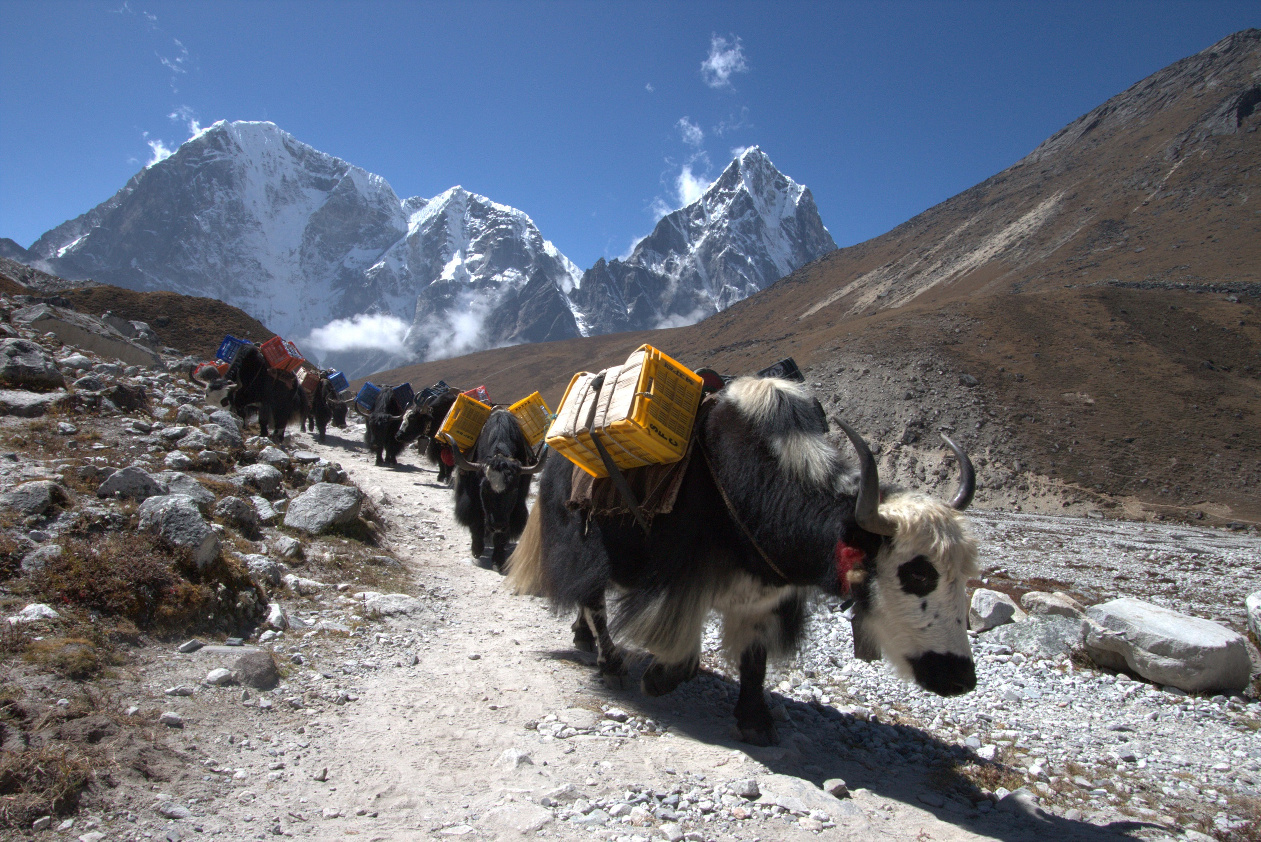 To the Everest Base Camp
