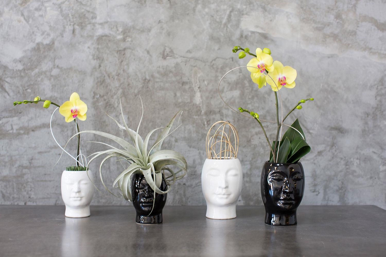Large Beau Vase