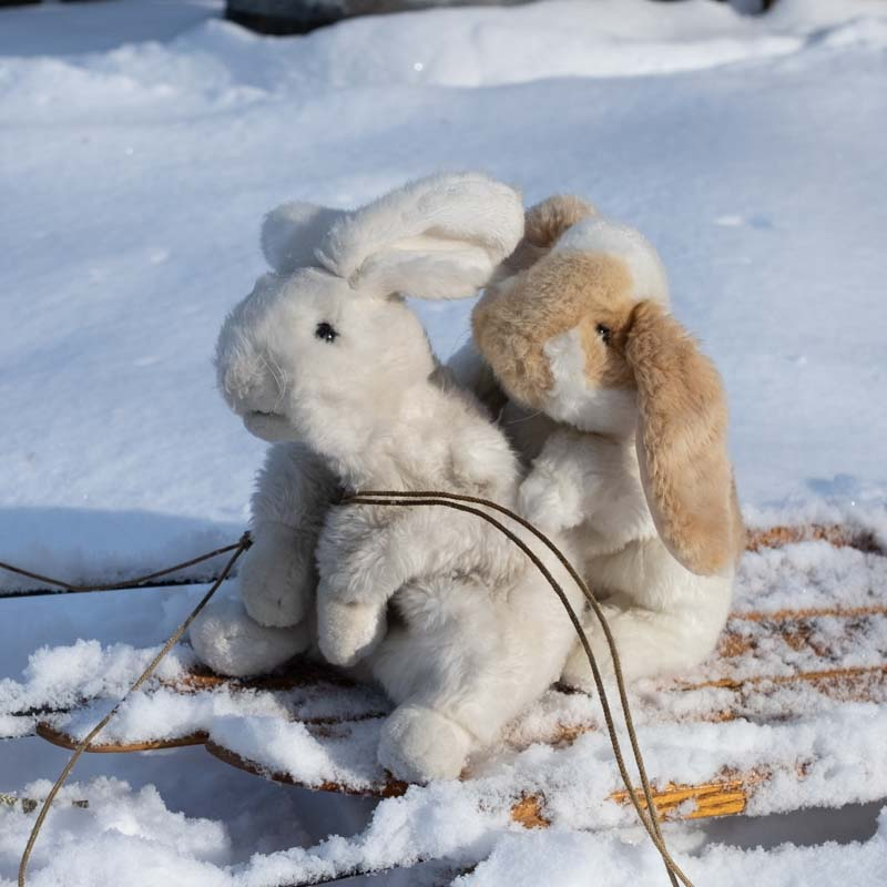 Two puppet bunnies on a sled in the snow
