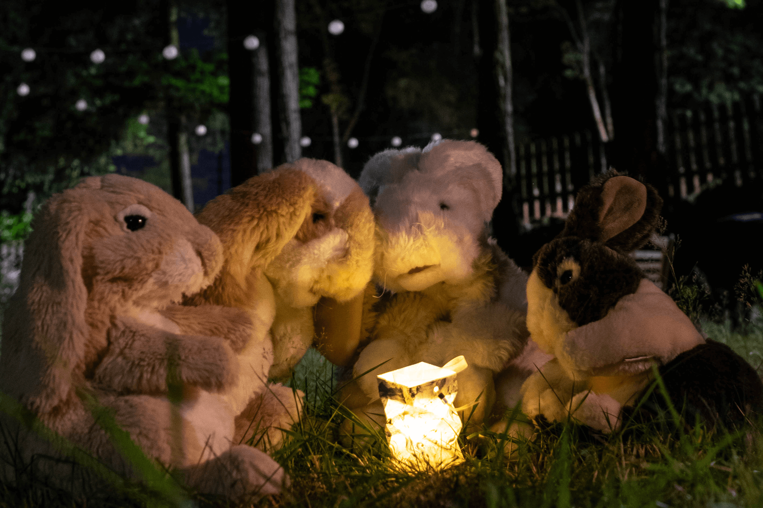 Plush bunnies gathered around a candle outside at night