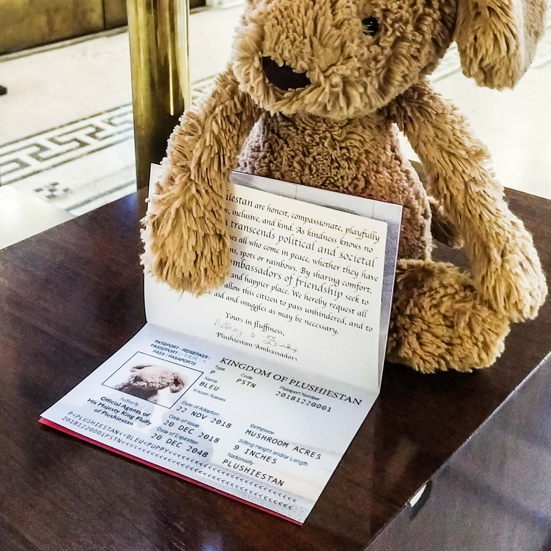 Plush puppy with a Plushiestan travel passport