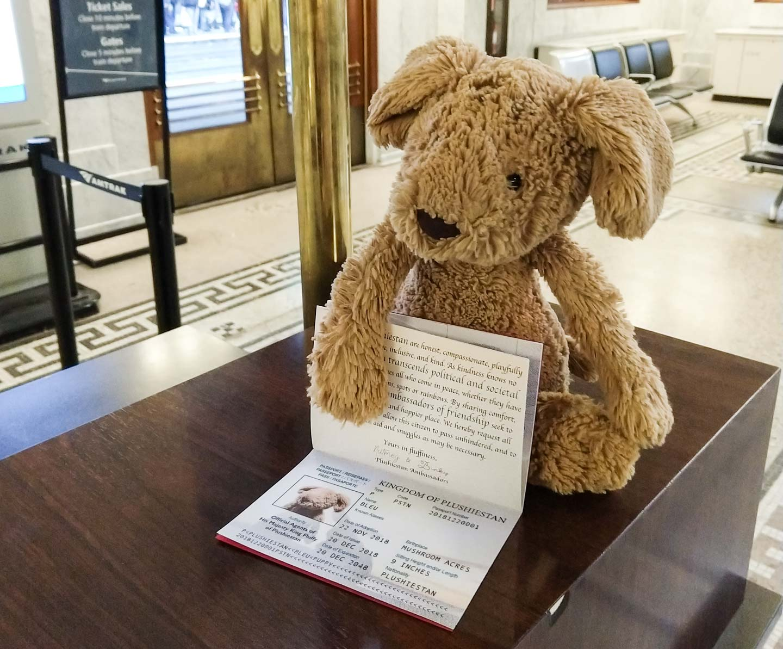 Stuffed animal with custom passport