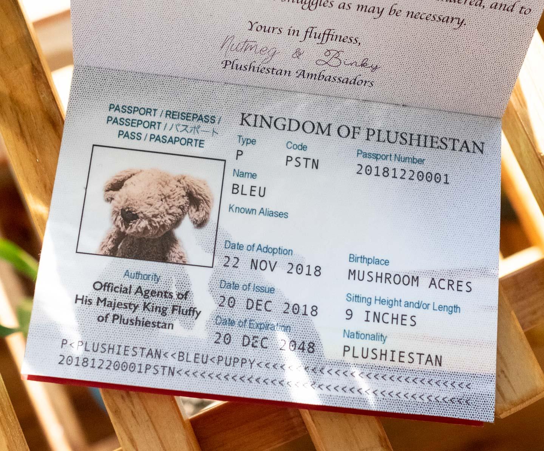 Customized toy passport for stuffed animal