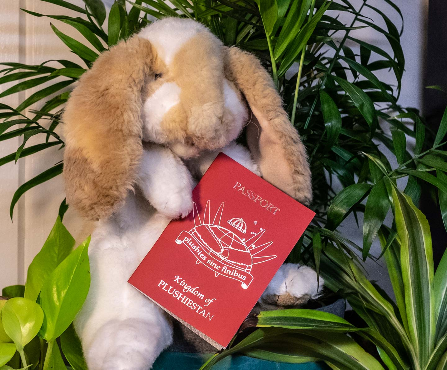 Stuffed bunny with official plushie passport