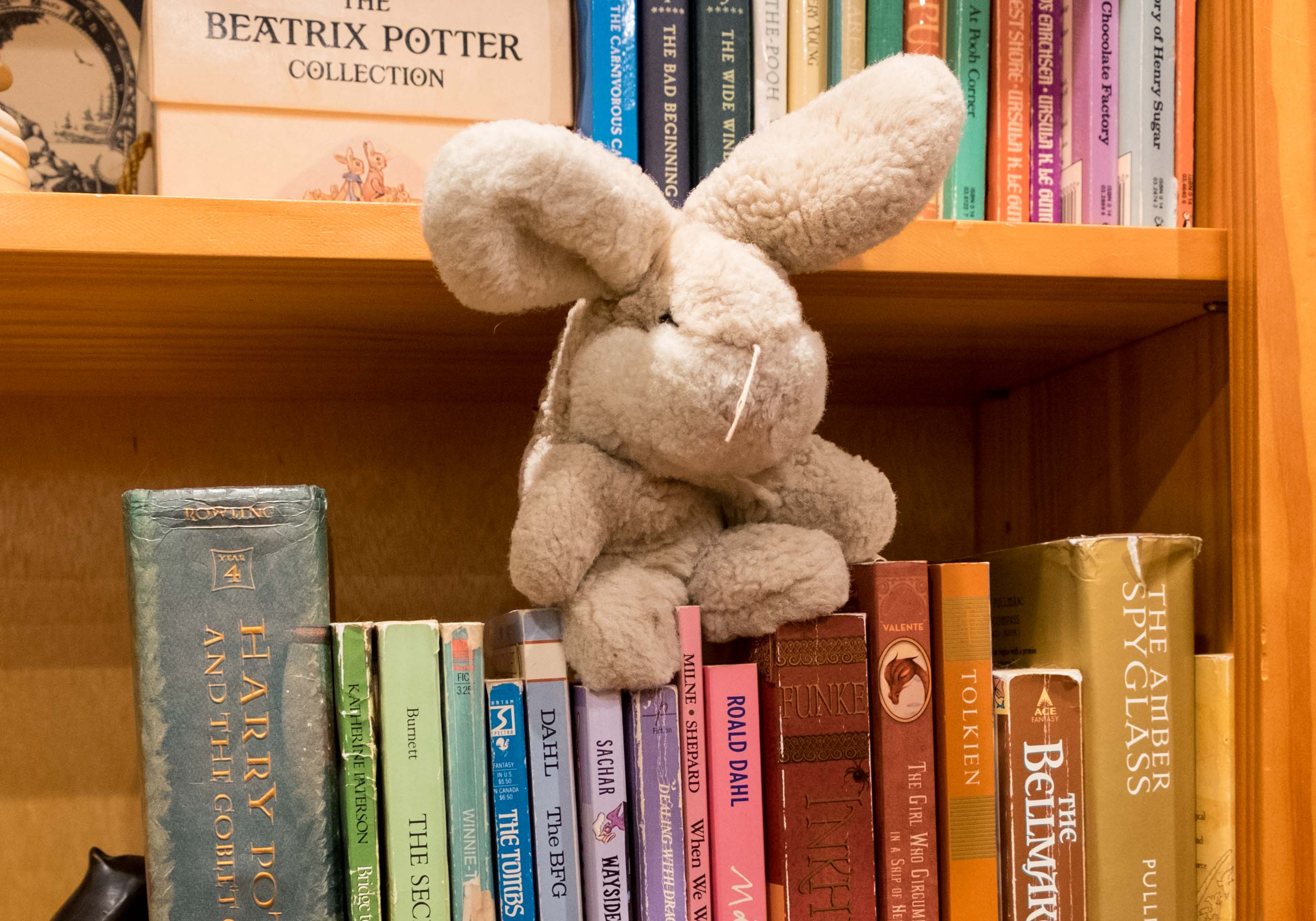 plush bunny on a bookshelf