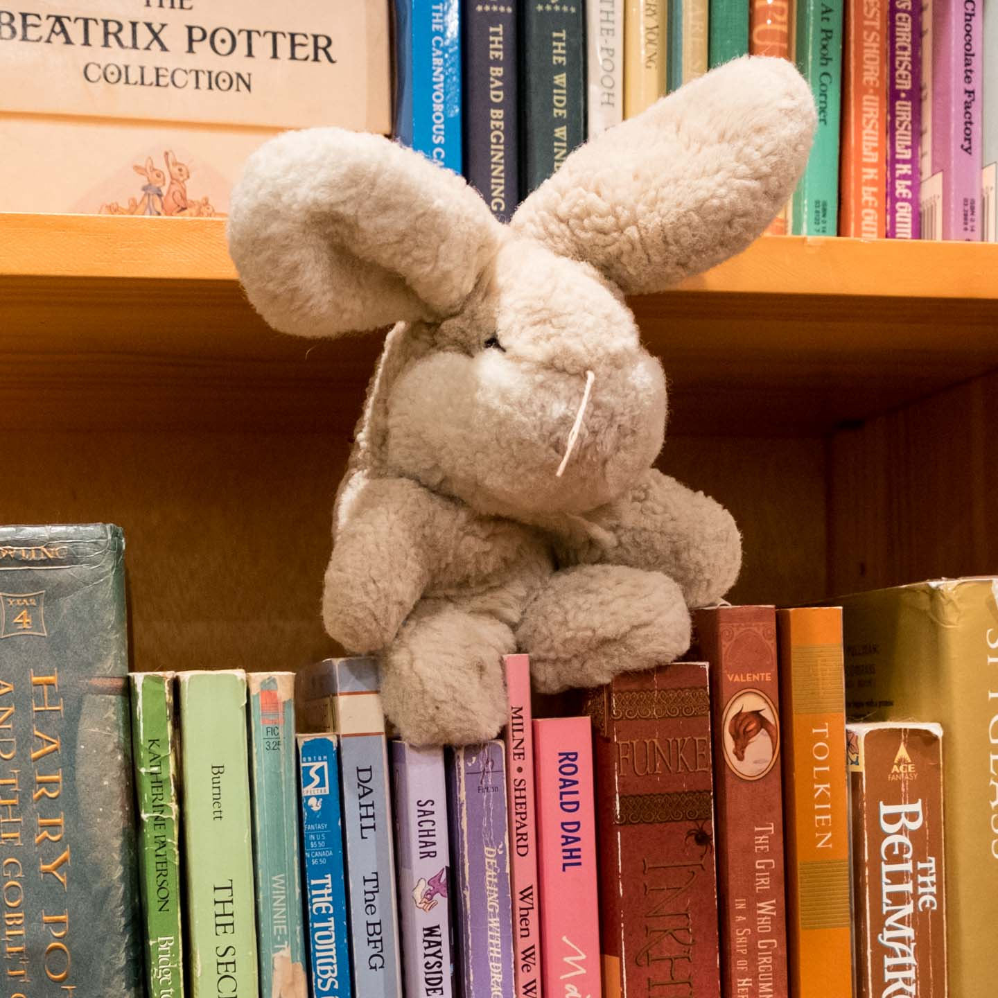 Well-loved white plush bunny sitting on top of children's books in rainbow order