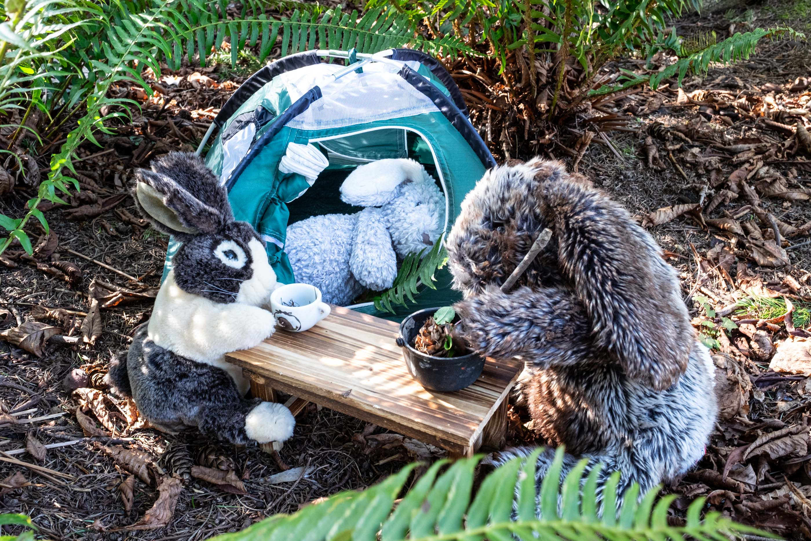 plush bunnies camping with a tent